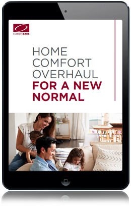 ebook new normal